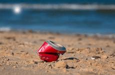 環境汚染問題を浮き彫りにした海の哺乳類の漂着