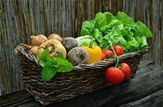 栄養価で見る「野菜」ランキング